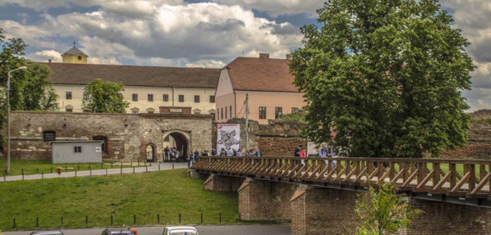 Muzeul Cetatii si Orasului Oradea face angajari. Vezi daca te califici