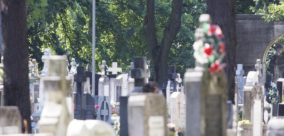 Administraţia Domeniului Public se pregăteşte pentru Duminica Tomii şi Paştele Morţilor