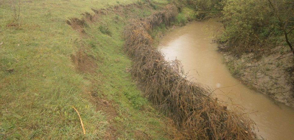 ABA Crişuri decolmateaza mai multe cursuri de apă din Bihor. Comunicat