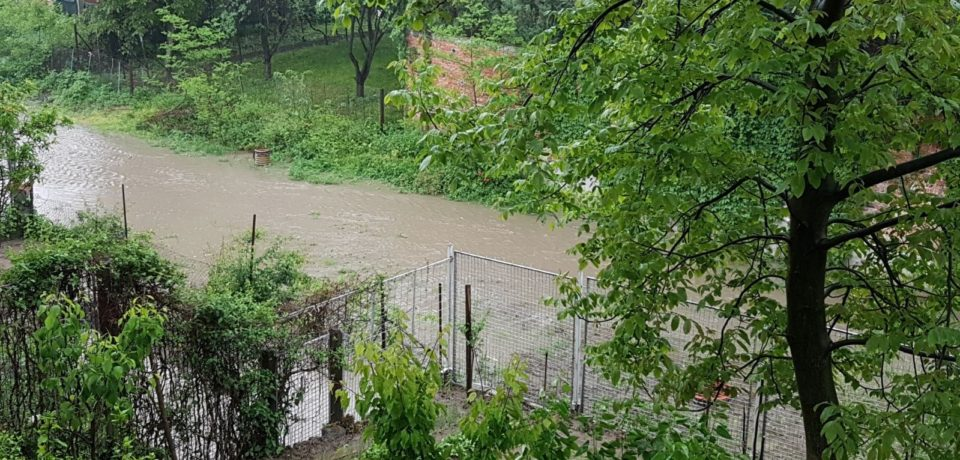 Inca o lucrare de mantuiala in Oradea. Intubat in urma cu 2 ani, paraul Paris a inundat gradinile riverane. VIDEO