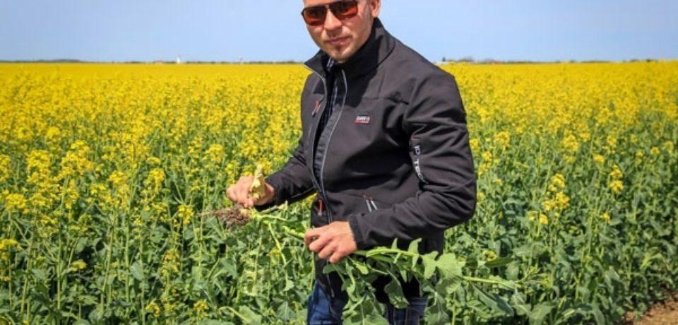 Bihoreanul care face bani din rapita. Un tanar de 26 de ani cultiva aproape 1000 de hectare de teren langa granita cu Ungaria