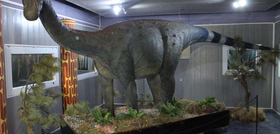 """Muzeul Țării Crișurilor se pregătește de o nouă expoziție – """"Ultimii dinozauri din Transilvania"""""""
