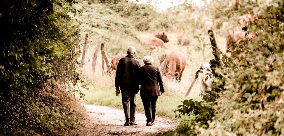 Ministrul Muncii: Cinci milioane de pensionari vor avea cu 15% mai mult la pensii începând de astăzi