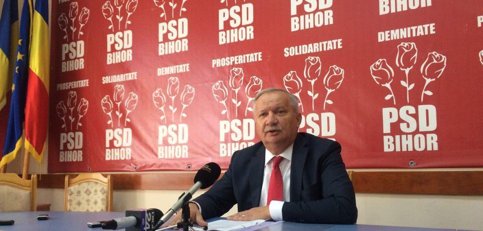 "Social democratii bihoreni vor sprijini referendumul ""pe persoana fizica"""