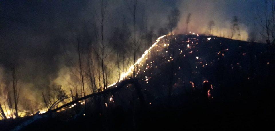 Incendiu nimicitor pe Valea Aleu, in zona Pietroasa. Foto