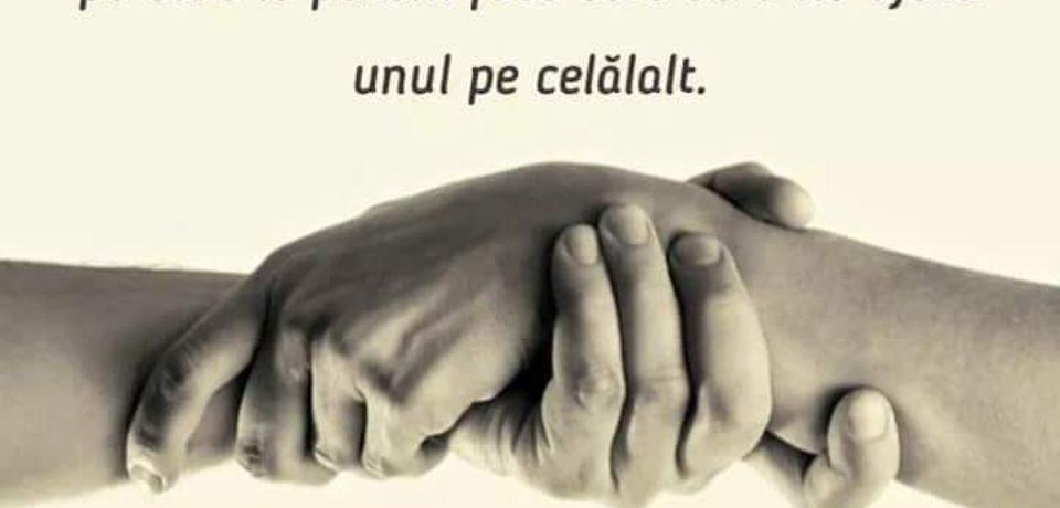 """Bunătatea nu costă nimic! """"Oradea donează o pâine""""- ediția a şasea"""
