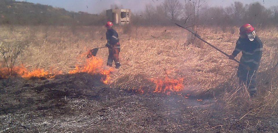 Nouă incendii de vegetație uscată într-o singură zi. Comunicat