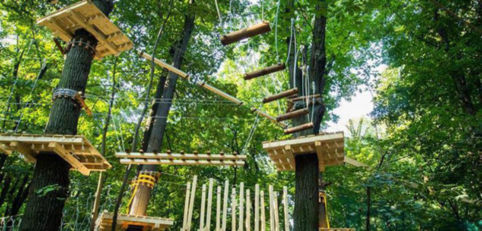 In statiunea Baile Felix se va realiza un parc de aventura