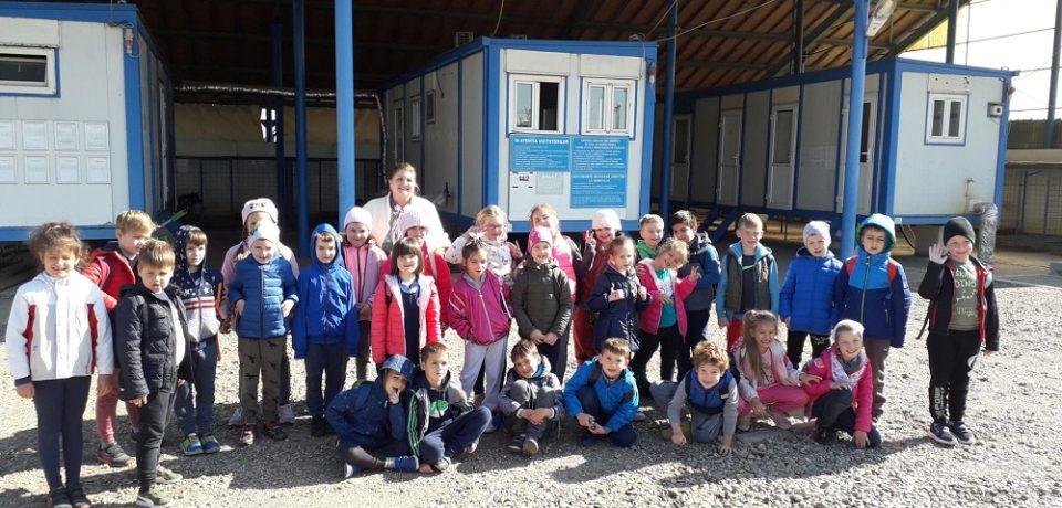 Școala Altfel, la Zoo Oradea și Adăpostul Grivei