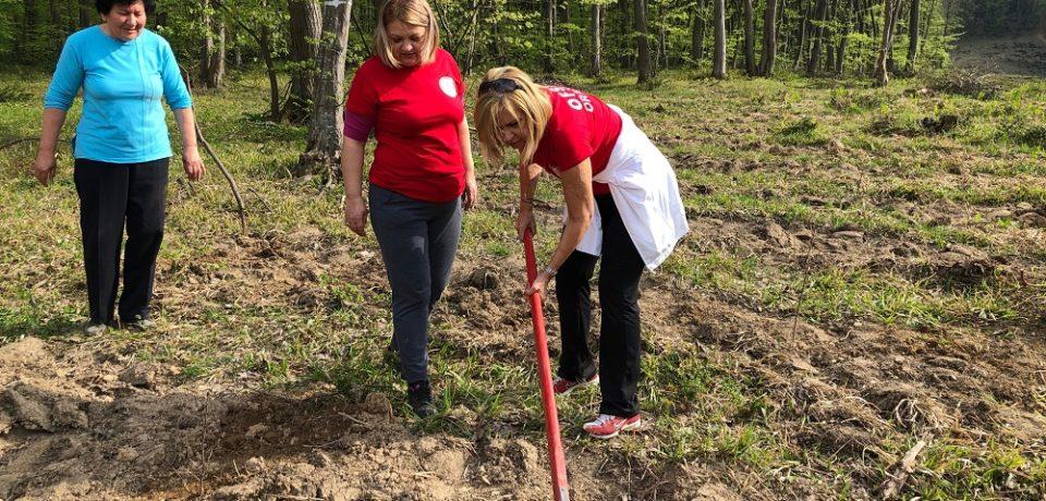 OFSD Oradea: Plantăm pentru viitor! Comunicat