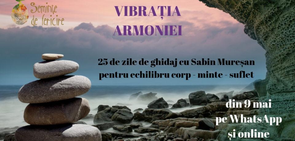Vibrația Armoniei, curs pentru echilibru corp – minte – suflet. Comunicat