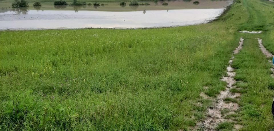 Ploile nu încetează A.B.A Crișuri intervine în localitatea Sălard. Comunicat