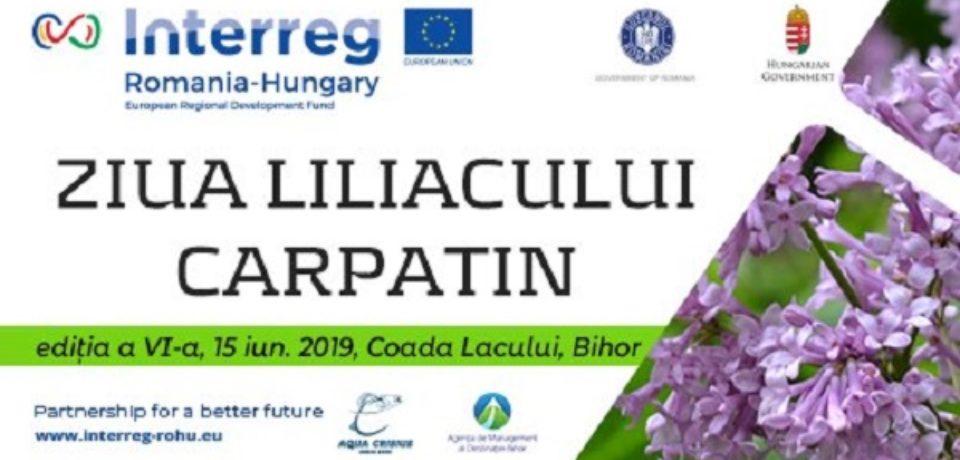 Ziua Liliacului Carpatin, sărbătoare a ariei protejate de pe Valea Iadului
