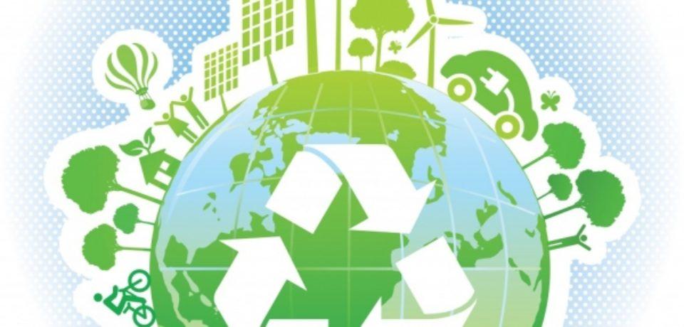 Ecolect lansează licitaţie de 44 milioane euro pentru servicii de colectare şi transport deşeuri în Bihor