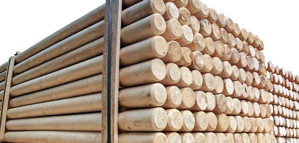 Aproape 100 de metri cubi de lemn rotund, expediați fără documente legale, confiscați valoric de polițiștii bihoreni